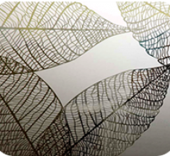 Листья, бесцветное/бронза